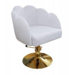 Фризьорски столове - BTK-034 - Злато
